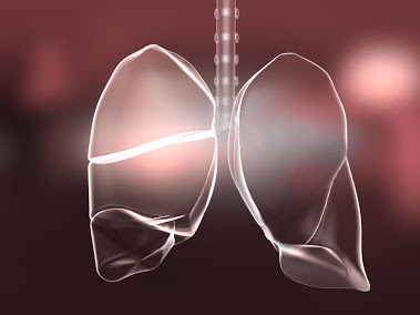 Lungs tbi